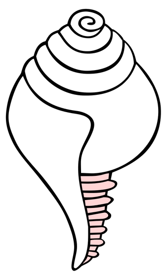 Buddhist Conch Shell Symbol