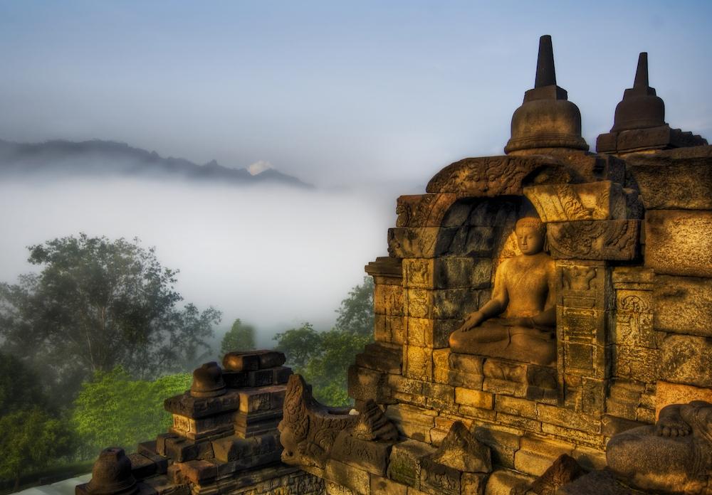 Buddha in the Jungle Highlands
