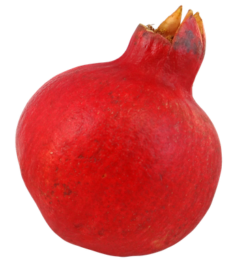 Christian Pomegranate Symbol